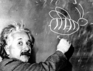 Albert-Einstein-Bees-on-the-Blackboard
