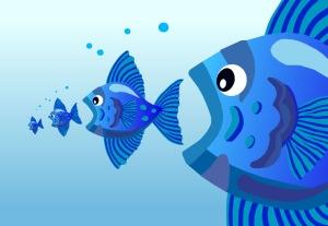 pez-grande-chico